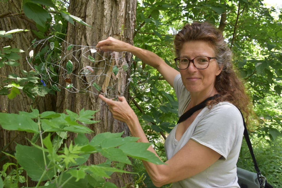 Isabelle Anguita a installé ses œuvres aux arbres du sentier du parc Jean-D'Avignon, à Coaticook. (Photo : Le Progrès de Coaticook - Vincent Cliche)